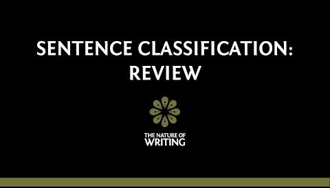 Sentence Classification: Review