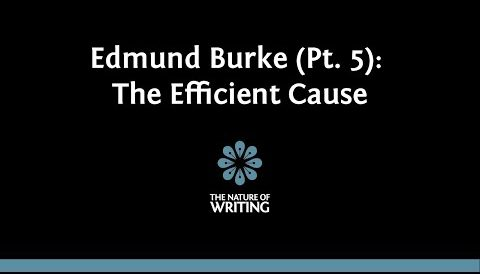 Edmund Burke on the Efficient Cause